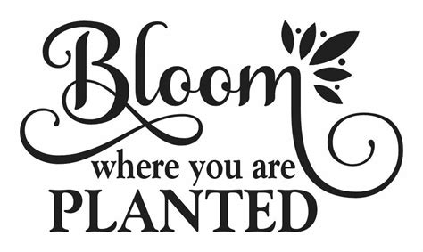 Where you are planted wildflower svg field of roses nursery svg she is a wildflower belong among the wildflowers welcome home svg home more design resources by grace lynn designs. Garden STENCIL**Bloom where you are planted**12x20 for ...