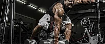Muscle Wallpapers Gym Workout Exercise Physical Bodybuilding