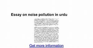 sound pollution essay
