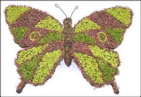 Butterfly Topiary Garden Frame