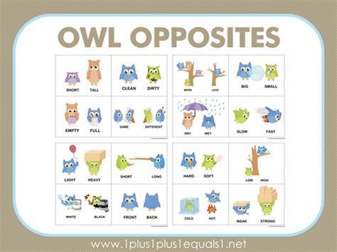 Owl Opposites Flashcards  Free Printable 1+1+1=1