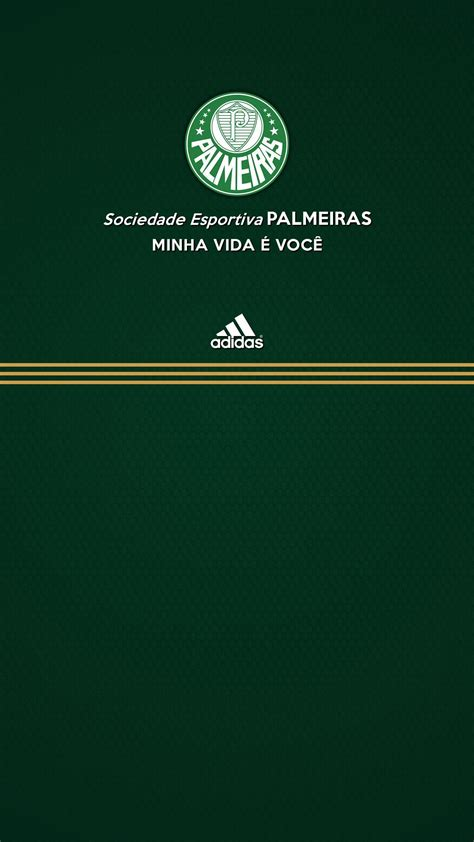 palmeiras wallpapers wallpaper cave