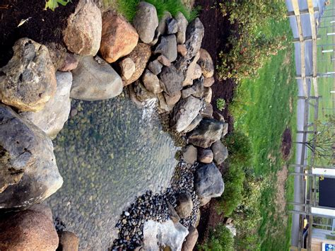 Benjamin murphy is a square peg in a round hole. Stormwater wetland adjacent to the Penguin Exhibit http ...