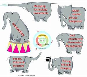 Elephant Life Cycle For Kids