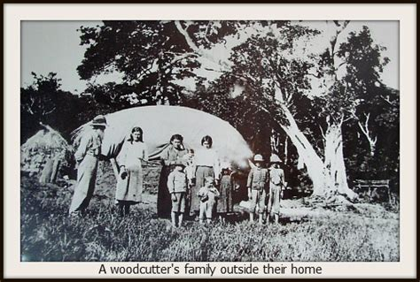 knysna forest woodcutters