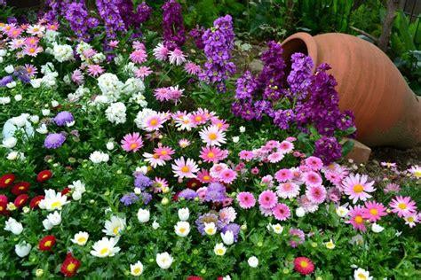 Gestalten Sie Ihre Eigene Gartenschau by Gestalten Sie Ihre Eigene Gartenschau Blumen