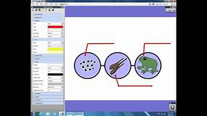 Creating Interactive Diagrams With Promethean Activinspire