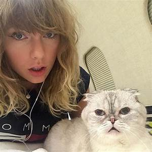 Taylor Swift and Her Cats Can't Wait for Reputation to ...