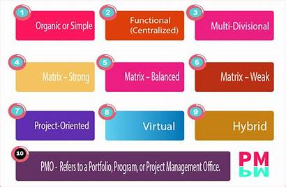 Functional Structure Organizational Pmi Pmbok Project Structures