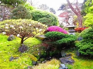 Plantes Pour Jardin Japonais Exterieur : conseils pour cr er un petit jardin japonais ~ Premium-room.com Idées de Décoration