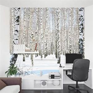 Birch Tree Wall Mural Winter Birch Tree Wallpaper