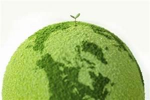 essay on green revolution in india essay on green revolution in india business plan writers montreal