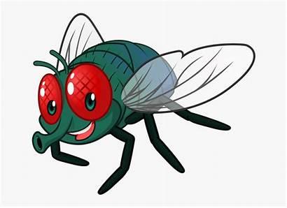 Fly Cartoon Clipart Clip Bugs Flying Bug