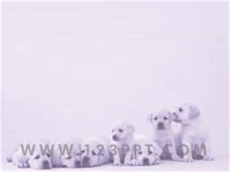 royalty  puppy dogs powerpoint background  purple