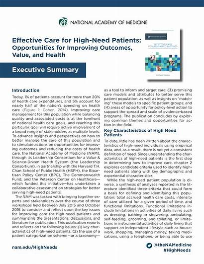 Summary Executive Example Examples Patient Care Needs