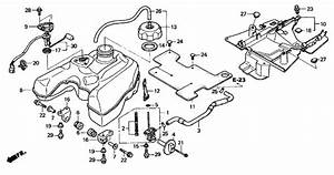 2005 Honda Rancher 350 Carburetor Diagram Sketch Coloring Page