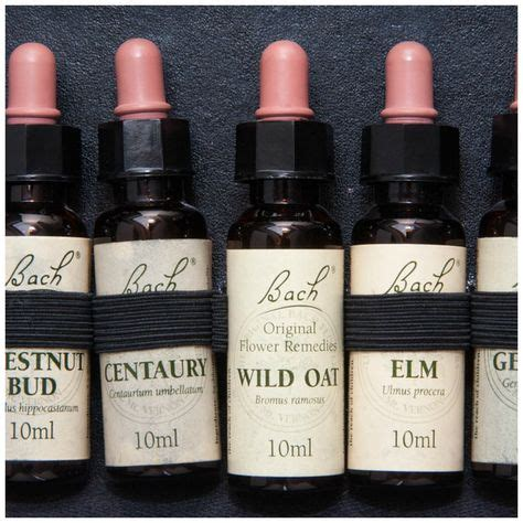 bach flower remedies  work  images bach