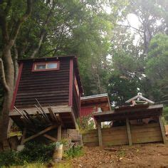 muir woods cabins discover and save creative ideas