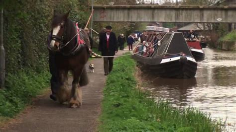 Horses On A Boat by Boat In Chester
