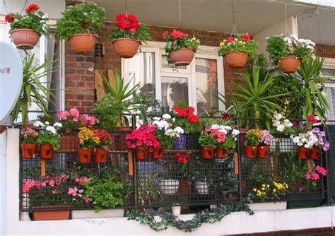 how to arrange flower pots in the garden 5 ideas for