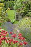 7854 best images about * ⊱Country Cottage Garden (and flowers for cottage style gardens