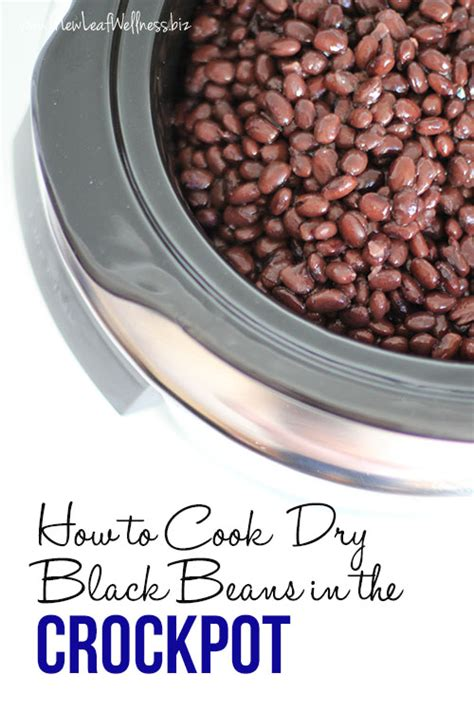 how to cook black beans how to cook dry black beans in the crockpot new leaf