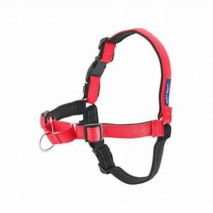 Deluxe Easy Walk Harness - Rose and Black with Same Day ...