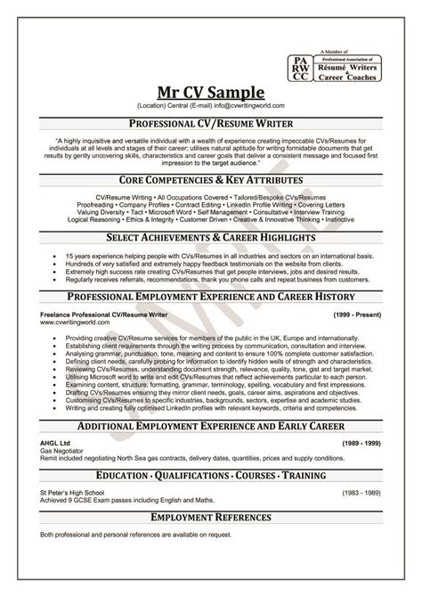 Professional Sle Resume by How To Write A Professional Resume Project Scope Template
