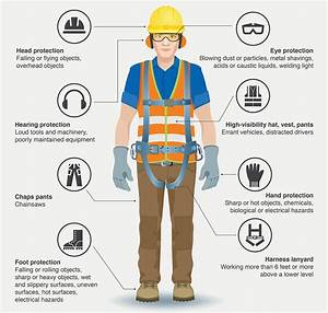 Personal Protection Equipment Poster  U0026 Website