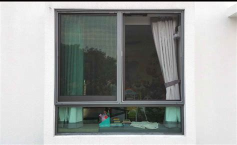 insect screen windows insect screen singapore