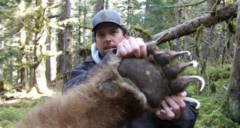 Largest Kodiak Bear Killed in Alaska