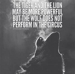 The Tiger and L... Wolf Vs Tiger Quotes