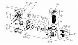 Pentair Intellifloxf Variable Speed Pump  August 2015