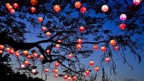 lunar  year wallpaper