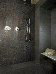 bathroom tiles ideas pictures 33 bathroom tile decorating ideas shelterness