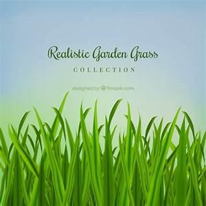 Garten Ohne Gras : realistische garten gras download der kostenlosen vektor ~ Sanjose-hotels-ca.com Haus und Dekorationen