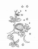 Owl Embroidery Coloring Evening Crafts Drawing Pattern sketch template