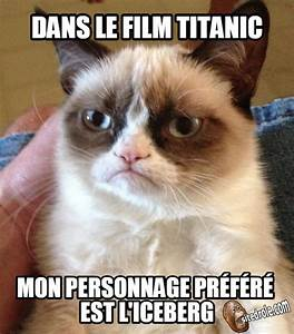 Gumpy Cat Cinéphile... image drole | mdrr | Pinterest ...