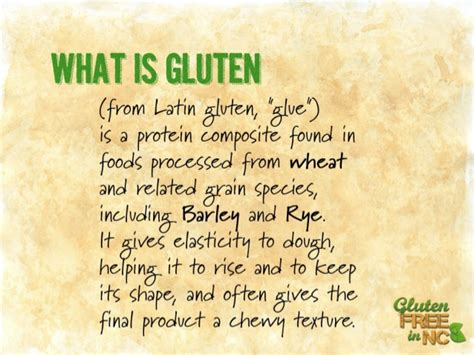 what is gluten what is gluten free and what does it have to do with me