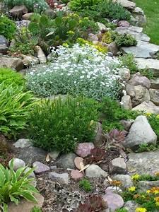 Hang Bepflanzen Bodendecker : pflanzen f r steingarten welche eignen sich am besten ~ Sanjose-hotels-ca.com Haus und Dekorationen