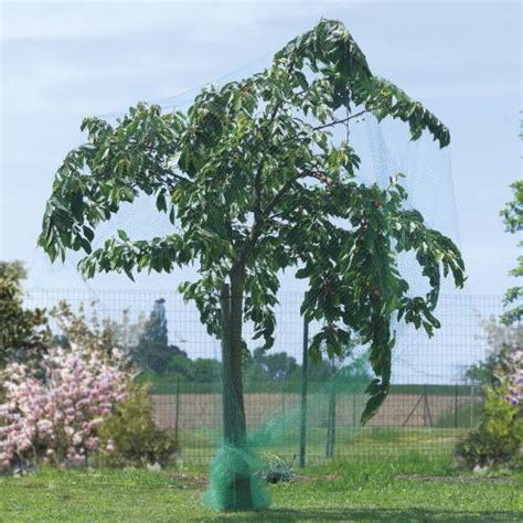 filet anti oiseaux pour arbres fruitiers 4x6 m vente