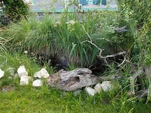 Große Reptilien Für Zuhause : happ 39 s reptilienzoo ber 1000 reptilien auf ber 4000qm ~ Lizthompson.info Haus und Dekorationen