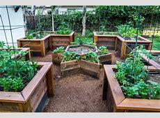 20+ Succulent Container Garden Designs, Ideas Design