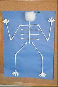 34 Best Skeleton Images On Pinterest