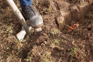 Garten Im Herbst Bearbeiten by Manngrabung Eine Schaufel Im Garten Landarbeit Vorbereiten