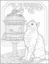 Coloring Catcoloring Stamping Craftgossip sketch template