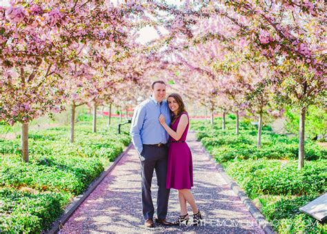 st louis wedding photographers botanical gardens