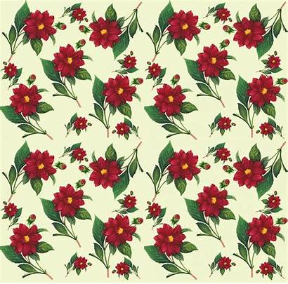 Floral Pattern Seamless Flower Background Flowers Android