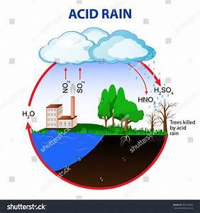 Acid Rain Caused By Emissions Sulfur Stock Vector