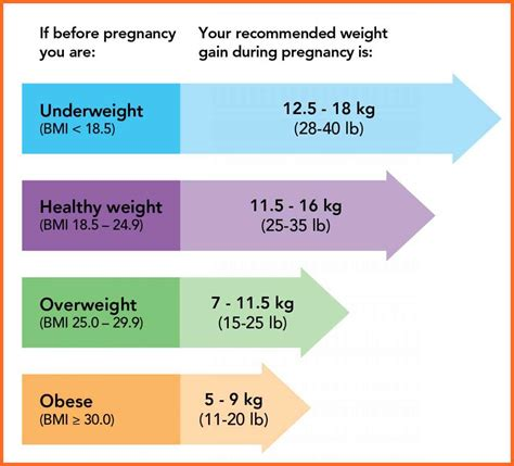 Chart Pregnancy Weight Gain Chart Pregnancy Weight Gain